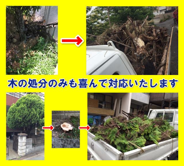 都島区木の処分業者